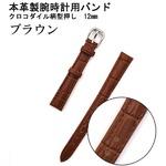 【腕時計用ベルト2本組】本革バンド クロコダイル柄型押し12mmブラウン