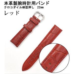 【腕時計用ベルト2本組】本革バンド クロコダイル柄型押し22mmレッド - 拡大画像