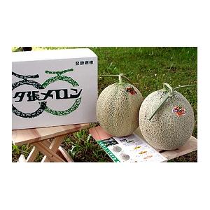 共選夕張メロン(品質【秀】)1.3kgサイズ3玉(中)