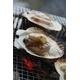 北海道BBQ大満足セット+北海甘エビ0.5kg付き(4人前〜6人前) 写真2