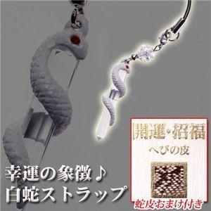 幸運の象徴♪白蛇ストラップ 蛇皮おまけ付き