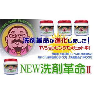 NEW洗剤革命II 1kg
