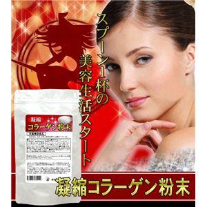 栄養補助食品 凝縮コラーゲン粉末 90g 【3袋セット】