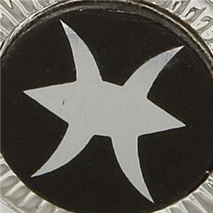 選べる星座のラペルピン  うお座 h02