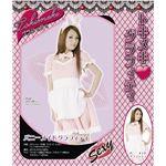 NEW トキメキ グラフィティ バニーメイドグラフィティ   ¥4,248