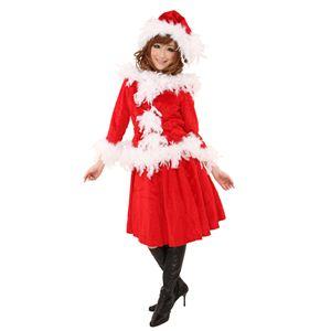 【クリスマスコスプレ】フェザーエアリードレス Ladies 4560320827535 - 拡大画像