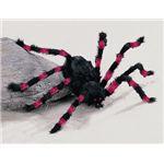 【2012ハロウィン】 Red/Black Spider-M(赤/黒の蜘蛛 M)