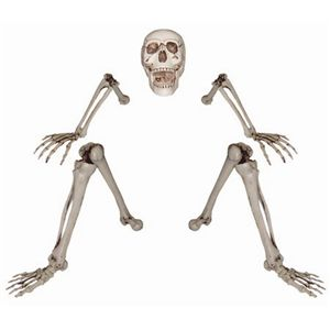 【2012ハロウィン】 Lifesize Ground Breaking Skeleton(ガイコツ) - 拡大画像
