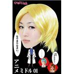 THEカツラ第5弾 アニメミドル01 【コスプレウィッグ】