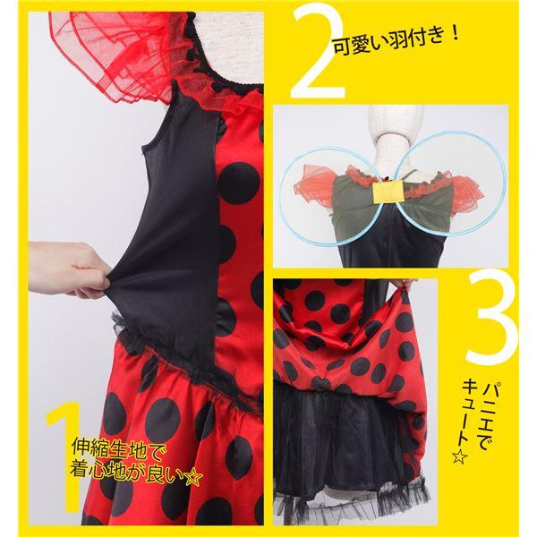 てんとう虫 コスプレ衣装(大人・レディース)「テントキュートガール」