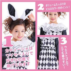 【コスプレ】 レディラビット140 (子供用/キッズ) f04