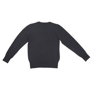 制服コスプレ衣装 【Vネックセーター ネイビー Lサイズ】 洗える アクリル レディース154cm〜162cm 『Teens Ever』 〔イベント〕 の画像