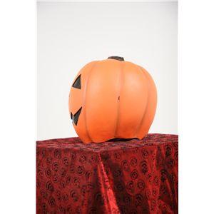 ハッピーパンプキンズ オレンジ画像2
