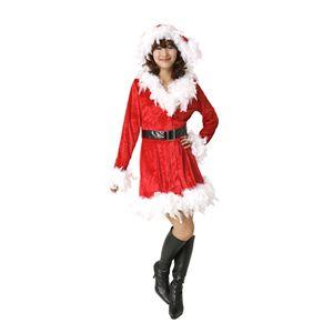 【2010年クリスマスサンタコスプレ】フェザーフェミニンドレス