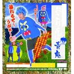 【コスプレ】 おこりんぼ青鬼 4560320831488