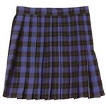 【コスプレ】 TeensEver(ティーンズエバー) コスプレ TE-11AW スカート ブルー×グリーン L 4560320837459