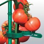 野菜などの茎をワンタッチ固定!サポートクリップ|100個セット