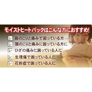 モイストヒートパック(家庭用)ハーフサイズ 温冷両用タイプ -2