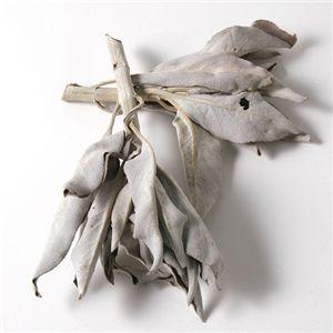セドナ産 パワーホワイトセージ 45g