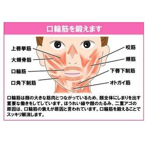表情筋 トレーニング 『フェイシャルリフト アトワンス』 オムニ YMO-74 (小顔グッズ)