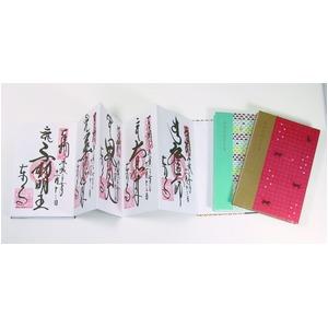 komon+ 集印帳【5冊セット】 稲妻フラミンゴ
