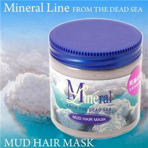 ミネラルライン マッドヘアマスク 450g