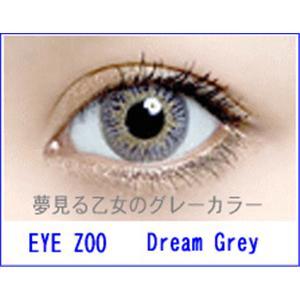 EYE ZOO 2枚セット ドリームグレー - 拡大画像