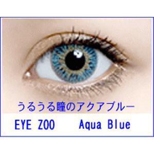EYE ZOO 2枚セット アクアブルー - 拡大画像