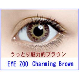 EYE ZOO 2枚セット チャーミングブラウン - 拡大画像