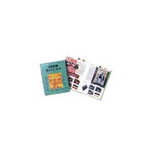 DICカラーガイド 2色印刷 カンとコツ