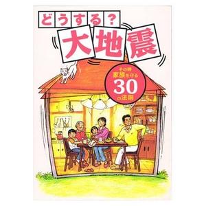 どうする?大地震 その時家族を守る30の法則 DVD+BOOK