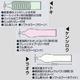 ジャストフィット北斗【3種セット】 - 縮小画像2