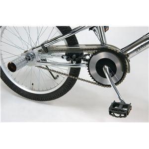 MYPALLAS(マイパラス) 自転車 M-62 20インチ ホワイト (フリースタイルタイプ)