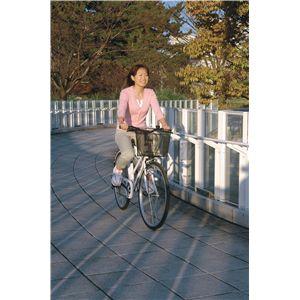 MYPALLAS(マイパラス) 自転車 M-513 26インチ ホワイト (シティサイクル)