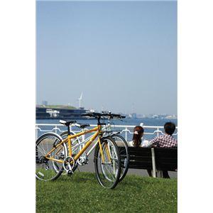 RENAULT(ルノー)自転車 700C CRB7006 ホワイト 【フロントキャリアー クロスバイク】