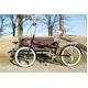 マイパラス 折畳自転車20型 M-240 ライト付 ブラウン