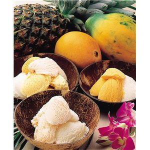 グルメトロピカアイスクリーム5種セット - 拡大画像