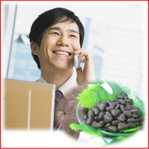 頑張るビジネスマンの食生活は要注意。今を無駄にはしない!プレミ アムサプリメント霊芝 - 拡大画像
