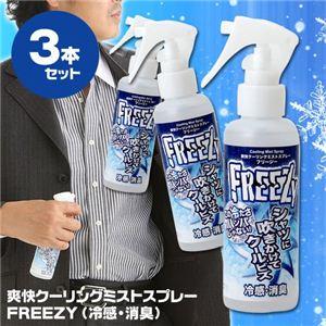 爽快クーリングミスト 冷感・消臭スプレー FREEZY 【3本セット】
