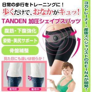 TANDEN加圧シェイプスパッツ(Mサイズ) - 拡大画像