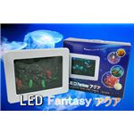 NEW LED Fantasy アクア  ¥5,229
