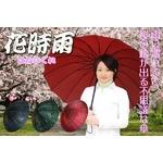 桜の浮き出る蛇の目傘 『花時雨』 16本骨&グラスファイバー エンジ