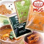 <16位>【激辛】世界のカレー 激辛10食セット