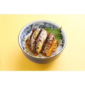 小どんぶりの素 80g  さんま蒲焼き丼10食セット