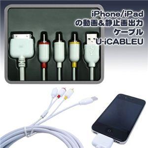 CAPLING(キャプリング) iPhone/iPadの動画&静止画出力ケーブル U-iCABLEU - 拡大画像
