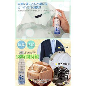 ラヴィリン 衣類用消臭剤 FIBER GEO(ファイバーデオ) 60ml