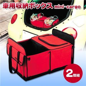 車用収納ボックス mini-cargo(クーラーボックス付き)2個組 - 拡大画像