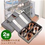 竹炭収納ケース スライド式シューズケース 2個セット