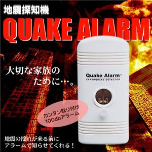 地震探知機 「地震まんまん」Quake Alarm QA-2000 - 拡大画像