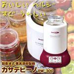 超音波式 果実酒即製器 カサデビーノ FW-300